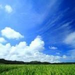 日経平均青天井