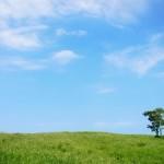 春の青空と株式投資