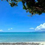 夏の株式相場と海