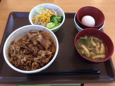 ゼンショーHD 牛丼