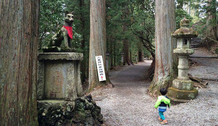 参道と狛犬